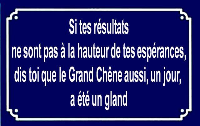 Salutations Kissiennes, bonjour, bonsoir... - Page 6 Jpd49ago